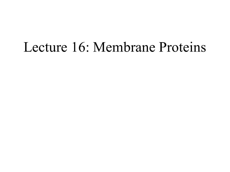 Lecture 16: Membrane Proteins
