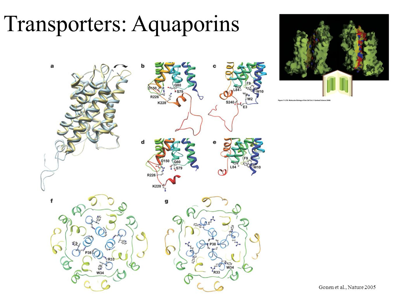 Transporters: Aquaporins Gonen et al., Nature 2005