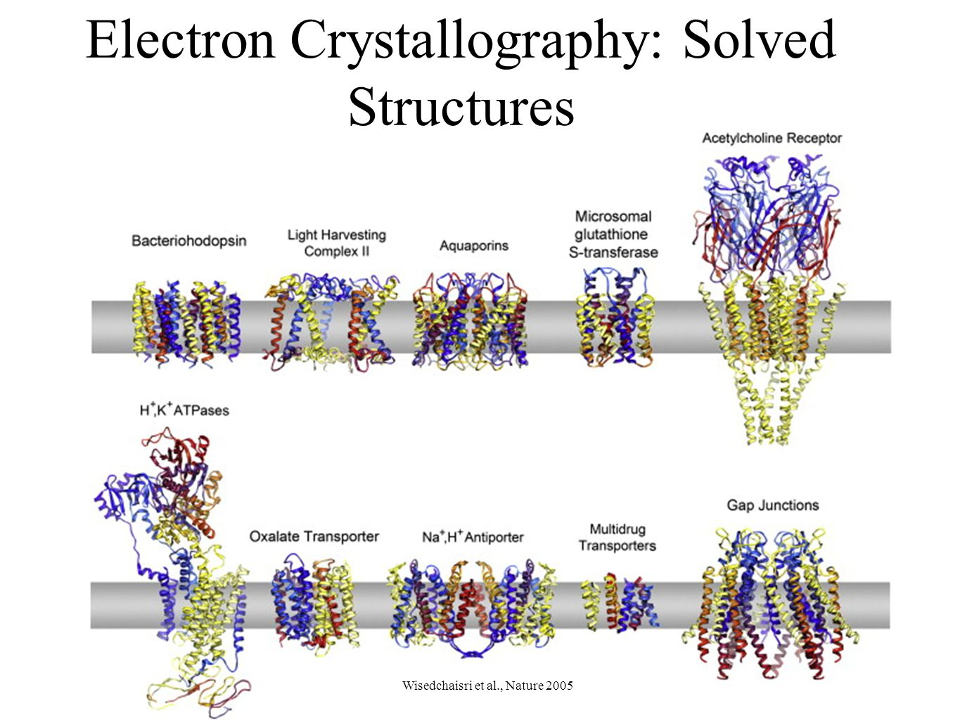 Electron Crystallography: Solved Structures Wisedchaisri et al., Nature 2005