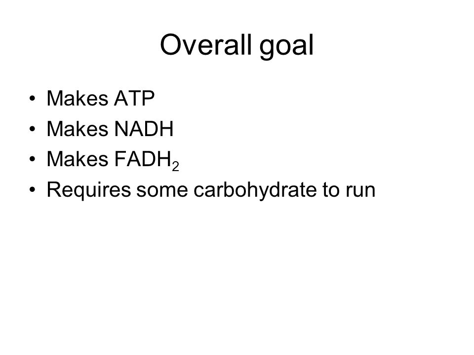 Overall goal Makes ATP Makes NADH Makes FADH 2 Requires some carbohydrate to run