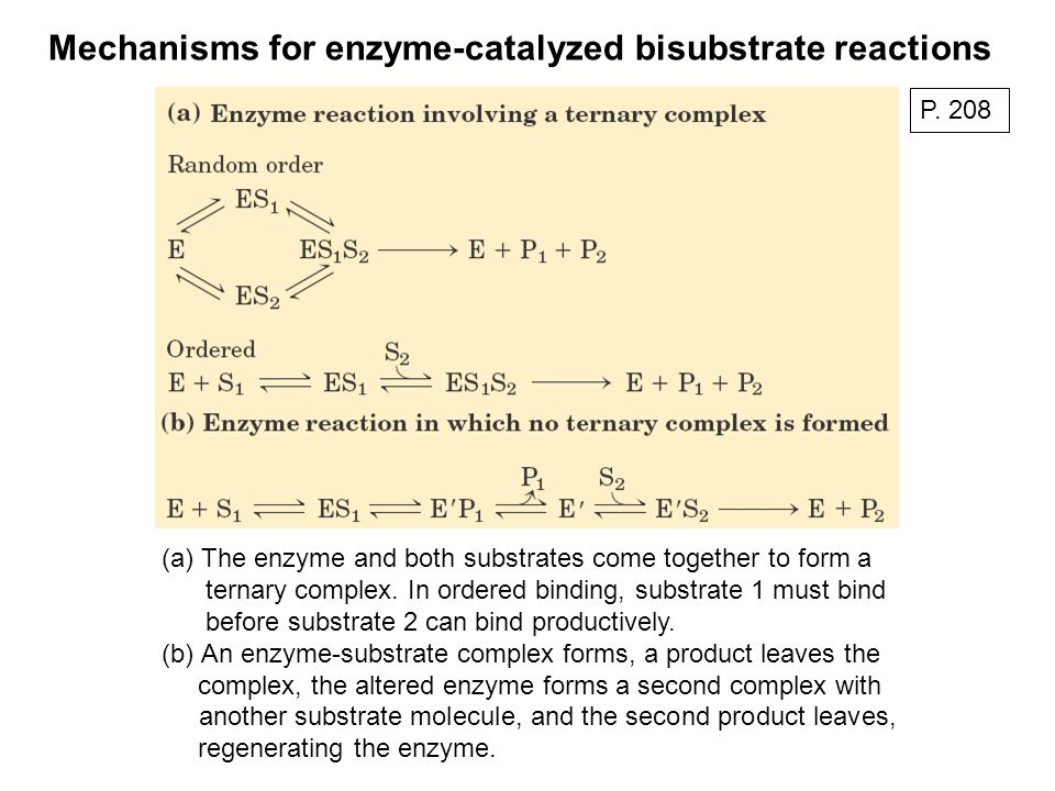 (a)The enzyme and both substrates come together to form a ternary complex. In ordered binding, substrate 1 must bind before substrate 2 can bind produ