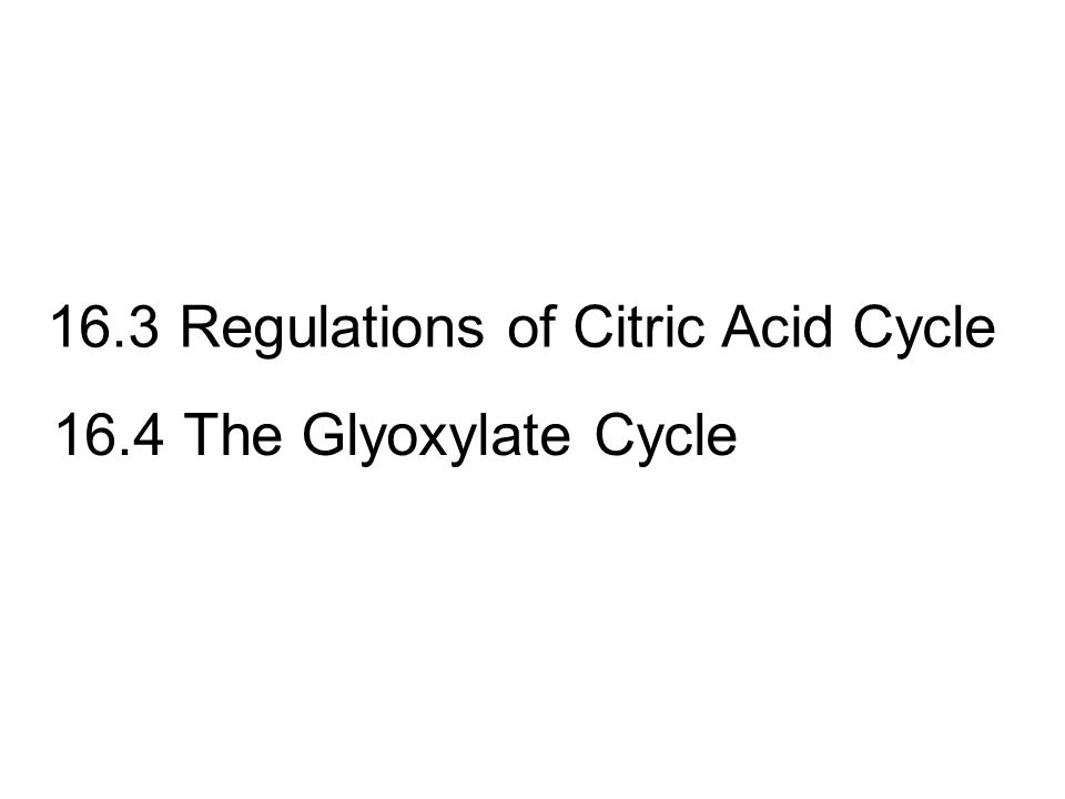 16.3 Regulations of Citric Acid Cycle 16.4 The Glyoxylate Cycle