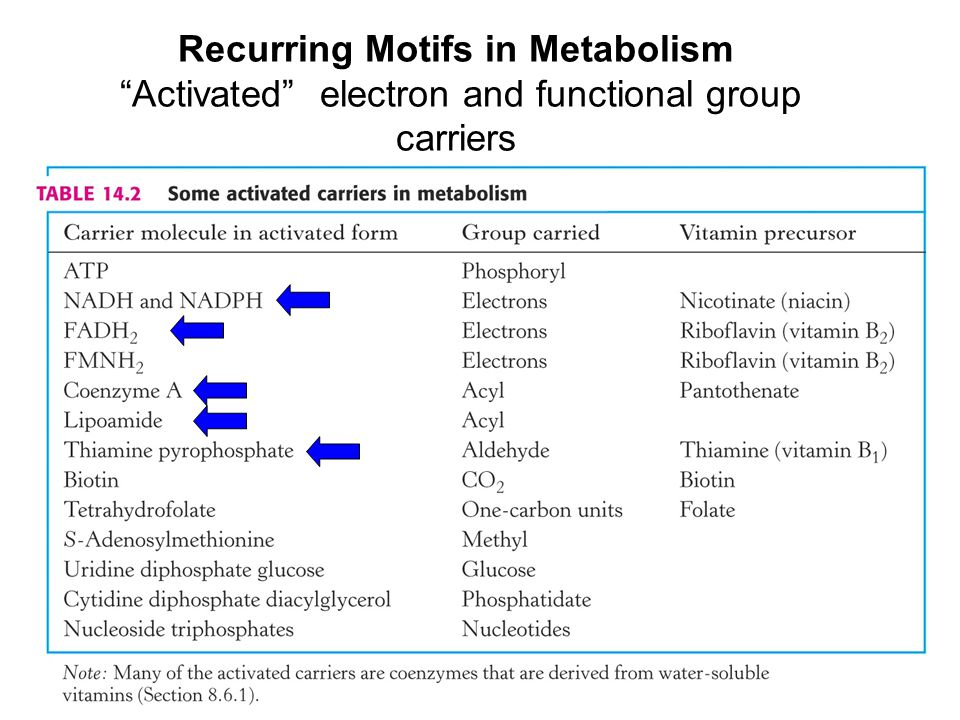 """Recurring Motifs in Metabolism """"Activated"""" electron and functional group carriers"""