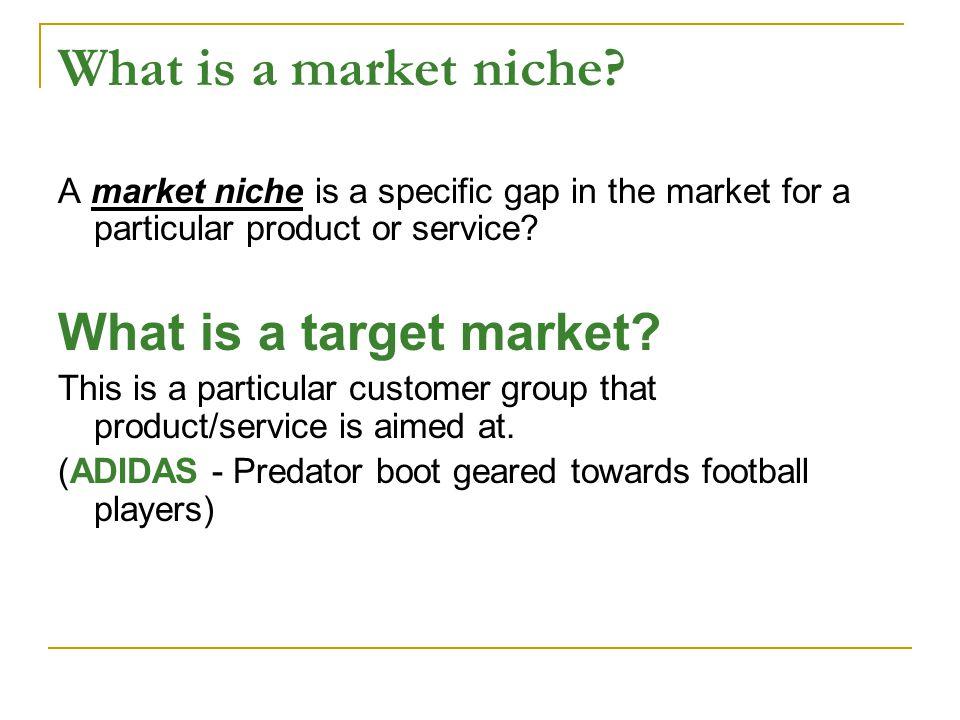 What is a market niche.