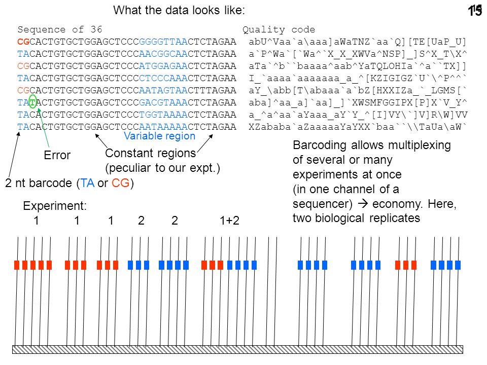 15 Experiment: 1 1 1 2 2 1+2 2 2 1 2 Sequence of 36 Quality code CGCACTGTGCTGGAGCTCCCGGGGTTAACTCTAGAA abU^Vaa`a\aaa]aWaTNZ`aa`Q][TE[UaP_U] TACACTGTGCTGGAGCTCCCAACGGCAACTCTAGAA a`P^Wa`[`Wa^`X_X_XWVa^NSP]_]S^X_T\X^ CGCACTGTGCTGGAGCTCCCATGGAGAACTCTAGAA aTa`^b``baaaa^aab^YaTQLOHIa`^a``TX]] TACACTGTGCTGGAGCTCCCCTCCCAAACTCTAGAA I_`aaaa`aaaaaaa_a_^[KZIGIGZ`U`\^P^^` CGCACTGTGCTGGAGCTCCCAATAGTAACTTTAGAA aY_\abb[T\abaaa`a`bZ[HXXIZa_`_LGMS[` TATACTGTGCTGGAGCTCCCGACGTAAACTCTAGAA aba]^aa_a]`aa]_]`XWSMFGGIPX[P]X`V_Y^ TACACTGTGCTGGAGCTCCCTGGTAAAACTCTAGAA a_^a^aa`aYaaa_aY`Y_^[I]VY\`]V]R\W]VV TACACTGTGCTGGAGCTCCCAATAAAAACTCTAGAA XZababa`aZaaaaaYaYXX`baa``\\TaUa\aW` 2 nt barcode (TA or CG) Constant regions (peculiar to our expt.) Variable region Barcoding allows multiplexing of several or many experiments at once (in one channel of a sequencer)  economy.