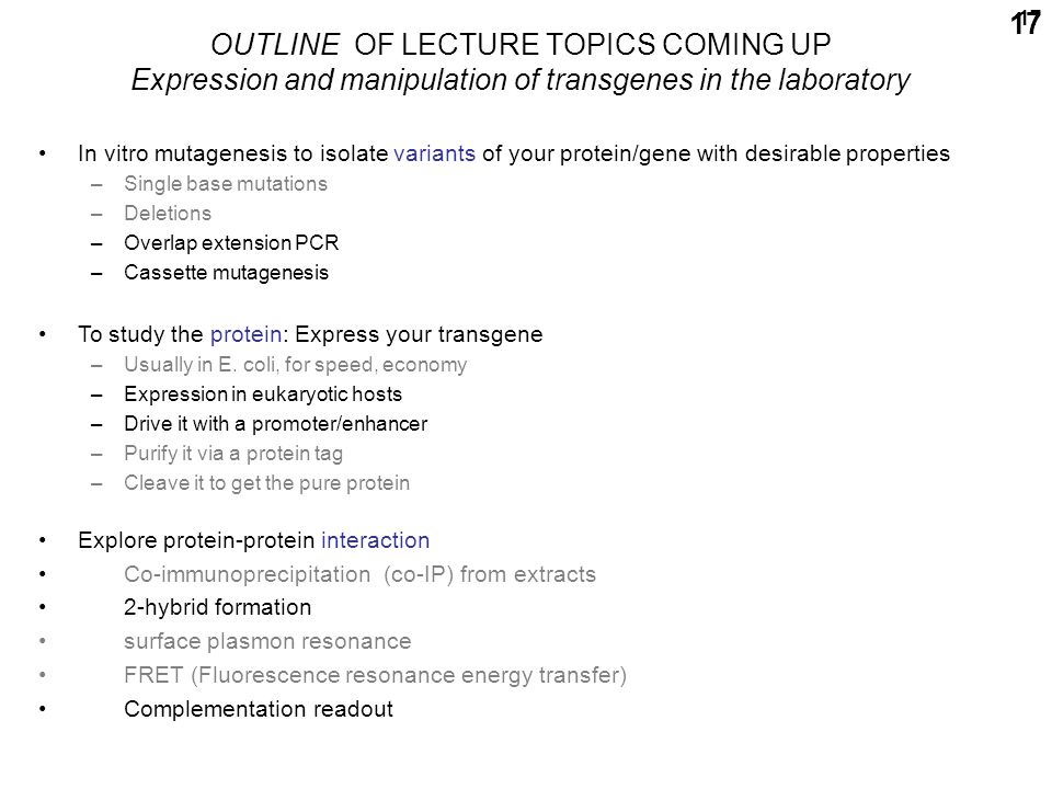 17 OUTLINE OF LECTURE TOPICS COMING UP Expression and manipulation of transgenes in the laboratory In vitro mutagenesis to isolate variants of your protein/gene with desirable properties –Single base mutations –Deletions –Overlap extension PCR –Cassette mutagenesis To study the protein: Express your transgene –Usually in E.