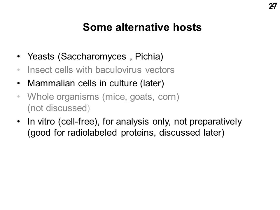 27 Some alternative hosts Yeasts (Saccharomyces, Pichia) Insect cells with baculovirus vectors Mammalian cells in culture (later) Whole organisms (mice, goats, corn) (not discussed) In vitro (cell-free), for analysis only, not preparatively (good for radiolabeled proteins, discussed later)
