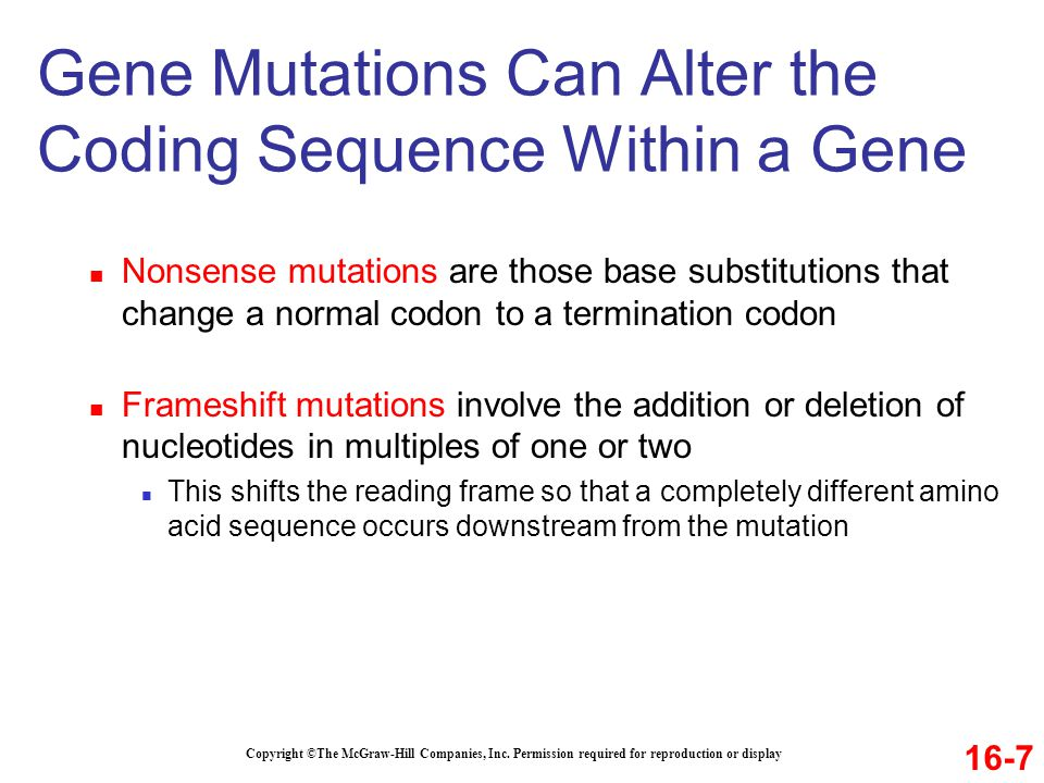 Copyright ©The McGraw-Hill Companies, Inc. Permission required for reproduction or display Gene Mutations Can Alter the Coding Sequence Within a Gene