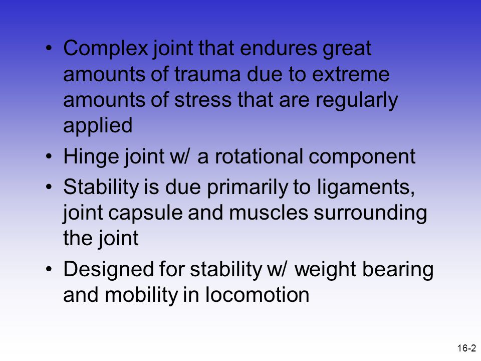 16-2 Complex joint that endures great amounts of trauma due to extreme amounts of stress that are regularly applied Hinge joint w/ a rotational compon