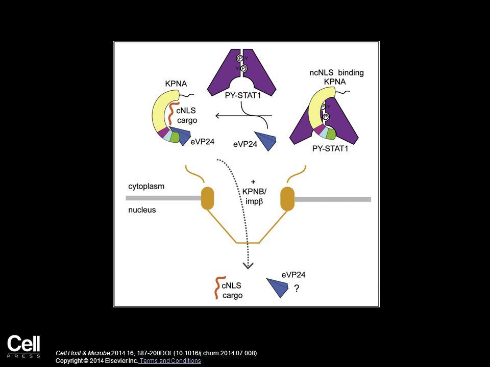 Cell Host & Microbe 2014 16, 187-200DOI: (10.1016/j.chom.2014.07.008) Copyright © 2014 Elsevier Inc.