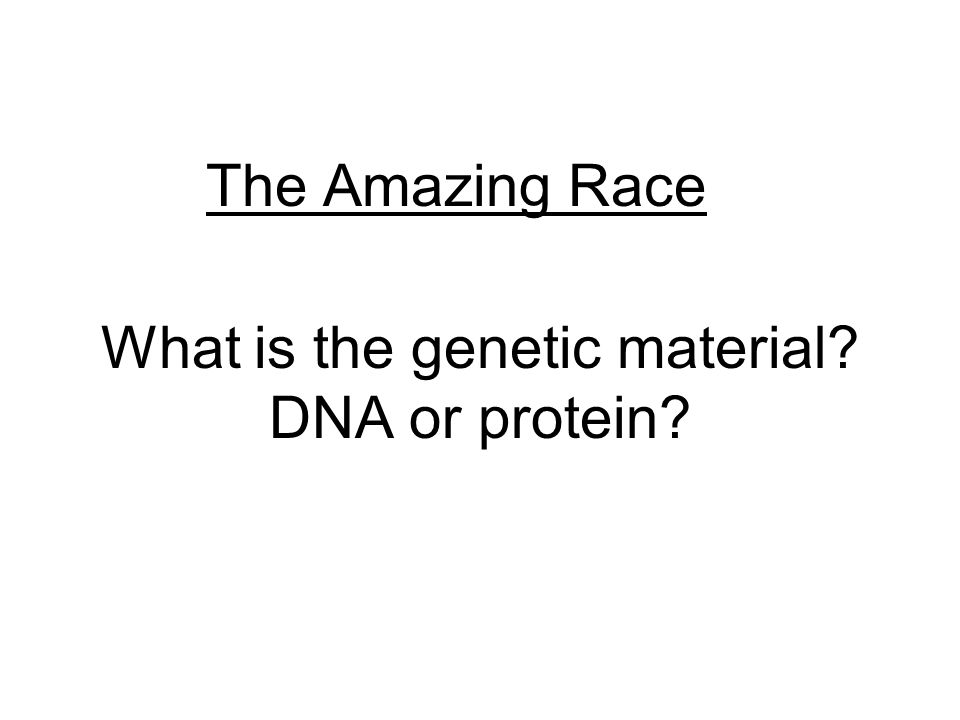 What is the genetic material DNA or protein The Amazing Race