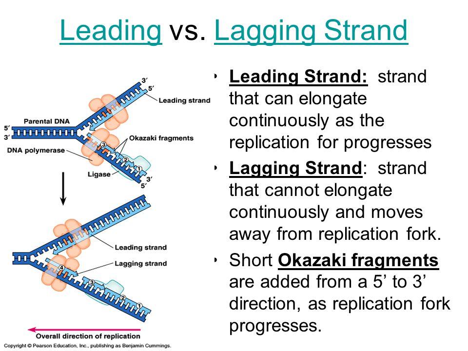 LeadingLeading vs.