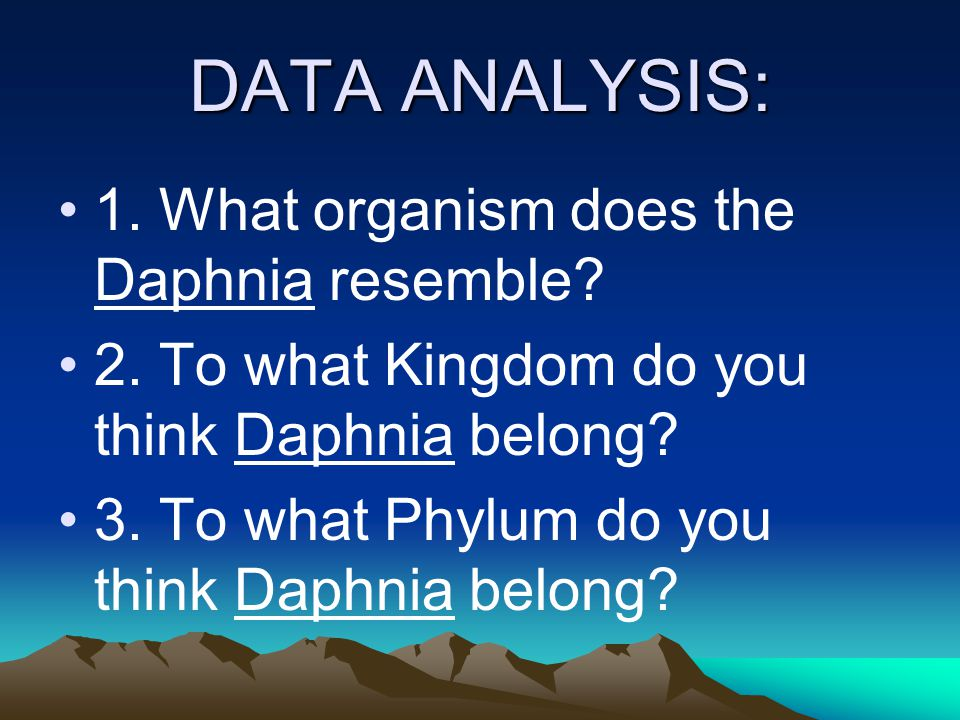 DATA ANALYSIS: 1. What organism does the Daphnia resemble.