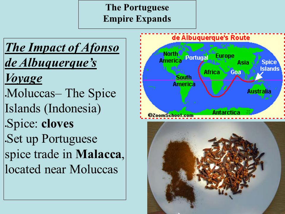 The Portuguese Empire Expands The Impact of Afonso de Albuquerque's Voyage  Moluccas– The Spice Islands (Indonesia)  Spice: cloves  Set up Portugue