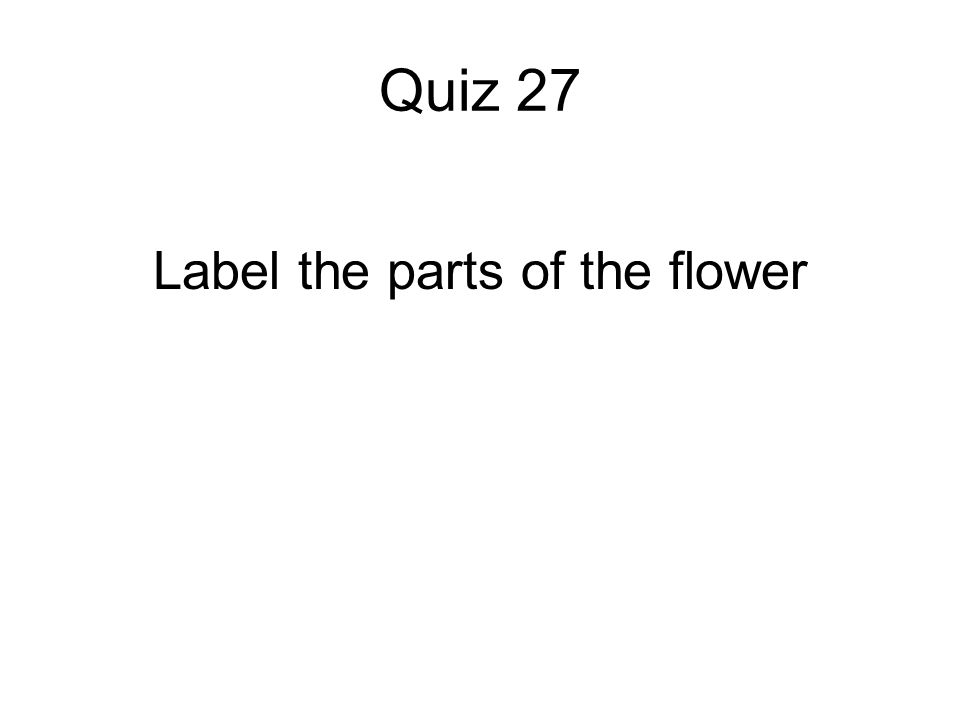 Quiz 27 Label the parts of the flower