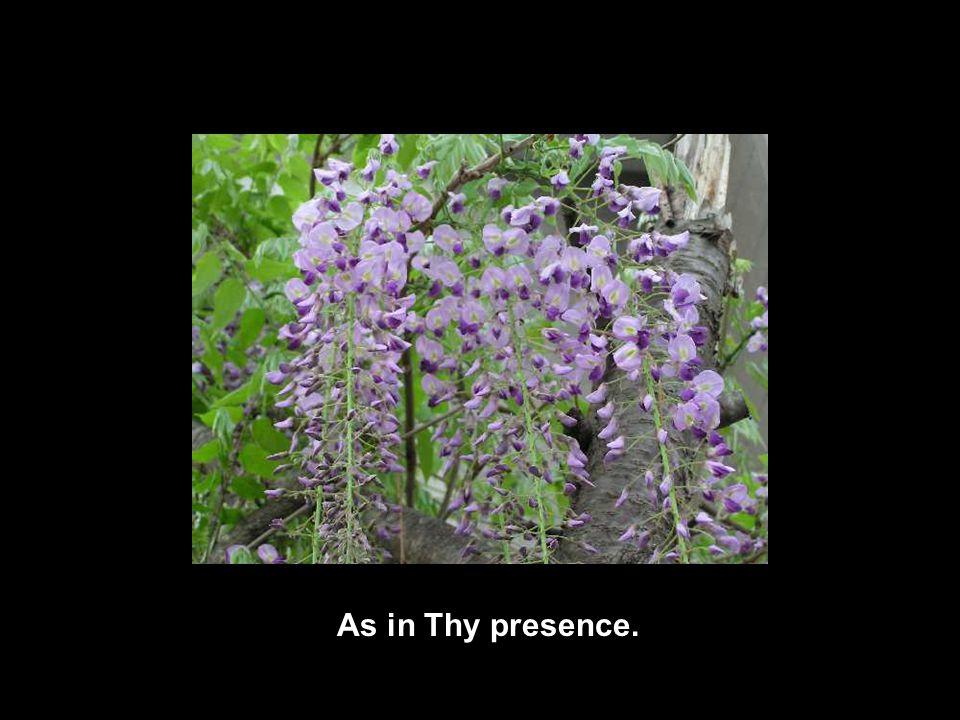 As in Thy presence.