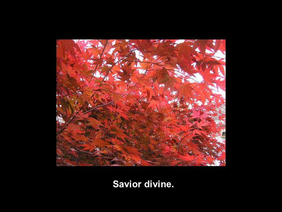 Savior divine.