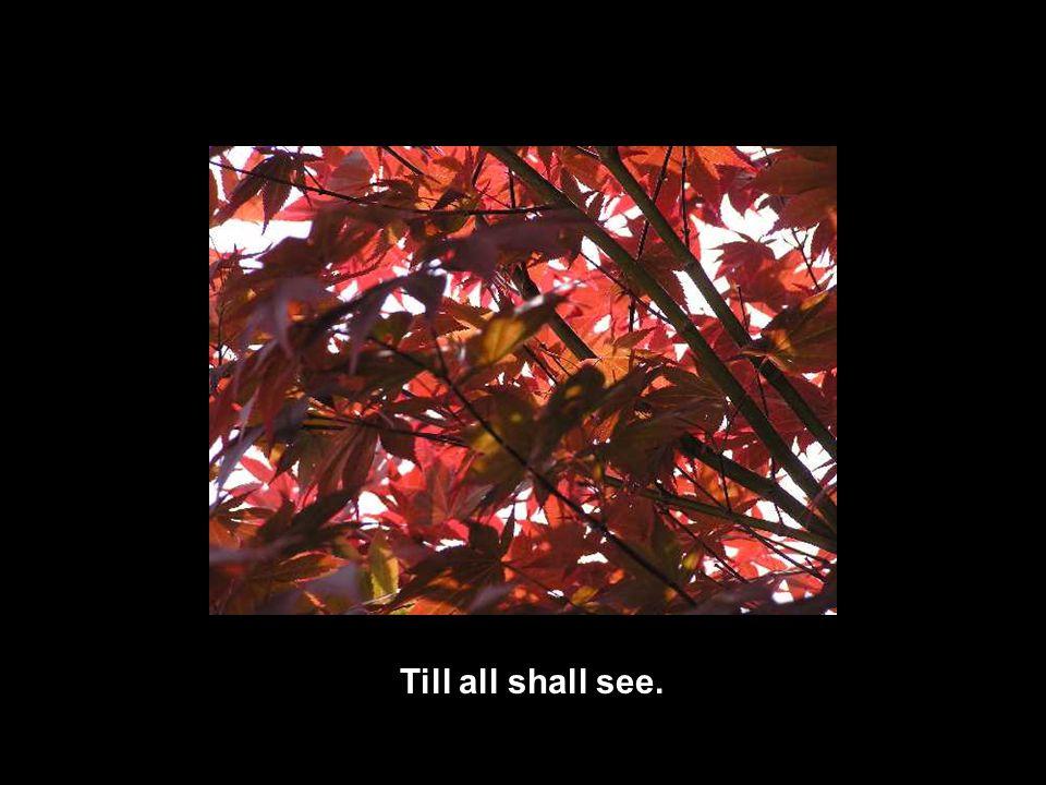 Till all shall see.