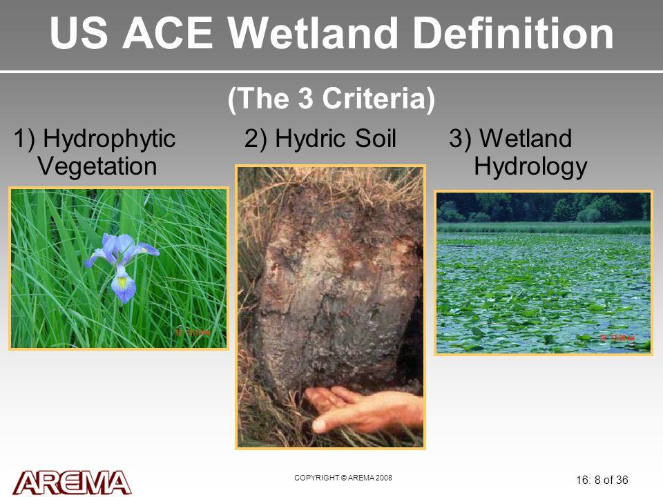 COPYRIGHT © AREMA 2008 16: 8 of 36 US ACE Wetland Definition (The 3 Criteria) 1) Hydrophytic Vegetation 2) Hydric Soil3) Wetland Hydrology