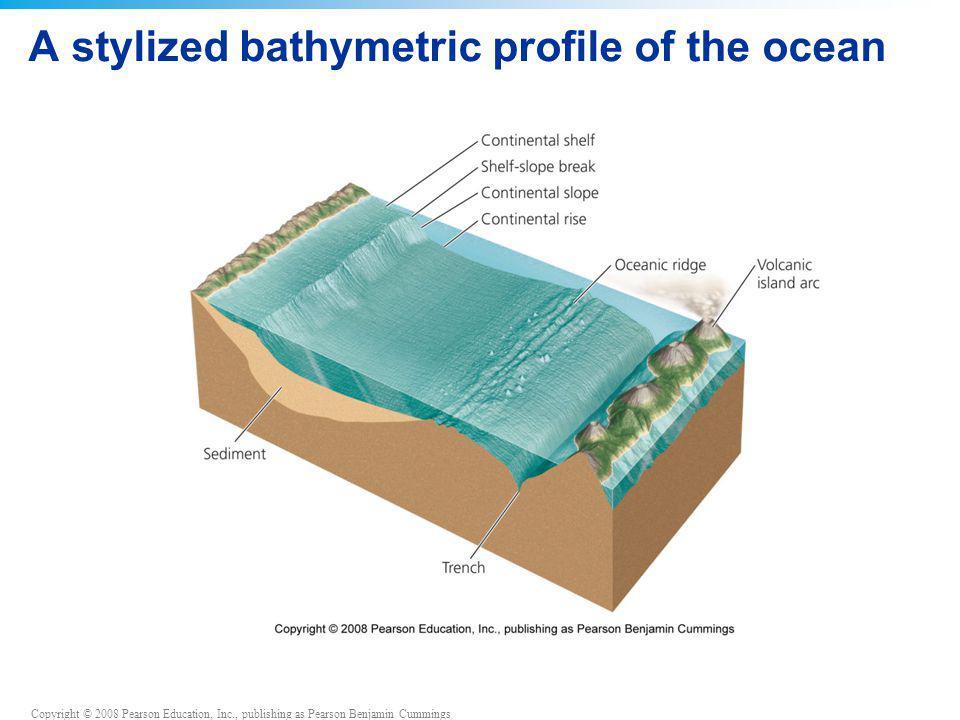Copyright © 2008 Pearson Education, Inc., publishing as Pearson Benjamin Cummings A stylized bathymetric profile of the ocean