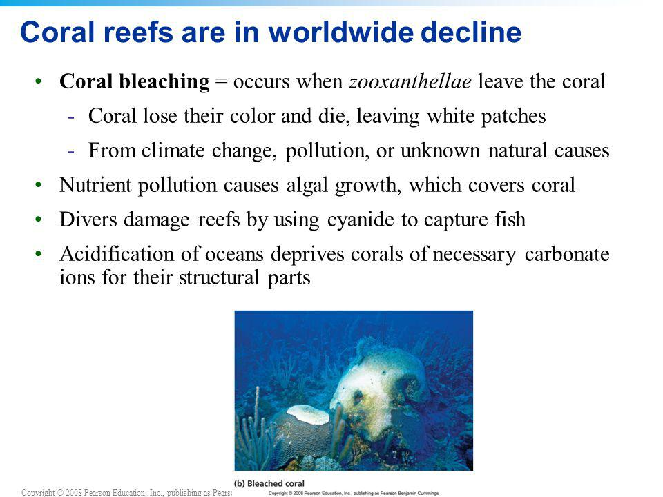 Copyright © 2008 Pearson Education, Inc., publishing as Pearson Benjamin Cummings Coral reefs are in worldwide decline Coral bleaching = occurs when z