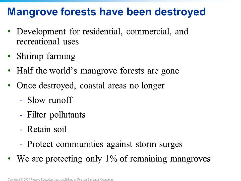 Copyright © 2008 Pearson Education, Inc., publishing as Pearson Benjamin Cummings Mangrove forests have been destroyed Development for residential, co