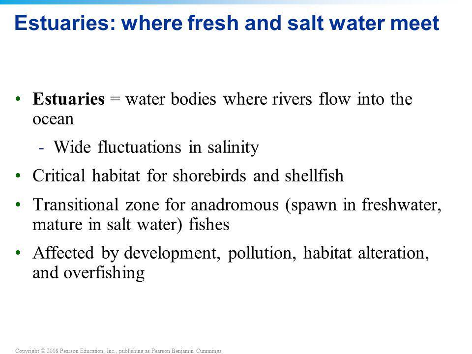 Copyright © 2008 Pearson Education, Inc., publishing as Pearson Benjamin Cummings Estuaries: where fresh and salt water meet Estuaries = water bodies