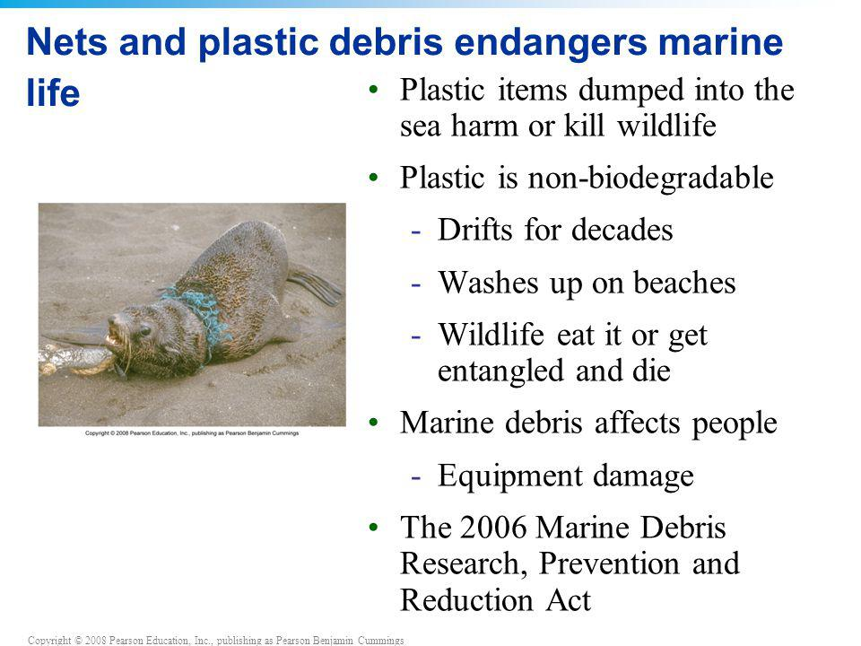 Copyright © 2008 Pearson Education, Inc., publishing as Pearson Benjamin Cummings Nets and plastic debris endangers marine life Plastic items dumped i