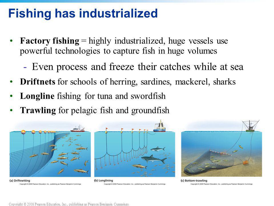 Copyright © 2008 Pearson Education, Inc., publishing as Pearson Benjamin Cummings Fishing has industrialized Factory fishing = highly industrialized,