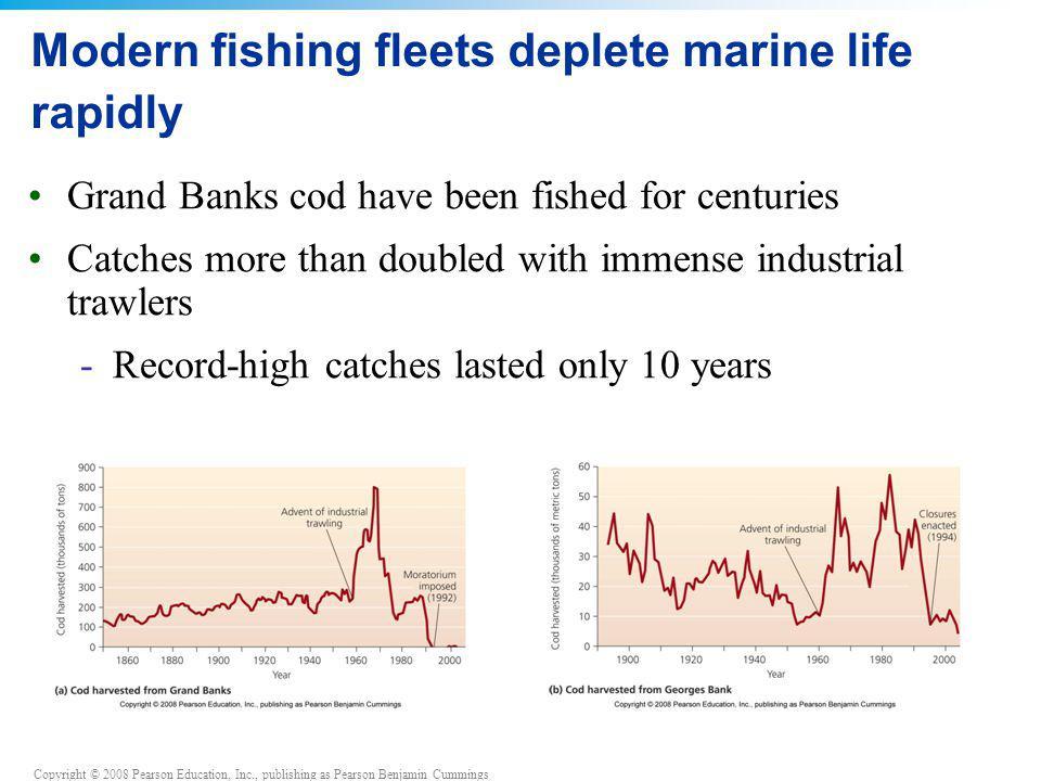 Copyright © 2008 Pearson Education, Inc., publishing as Pearson Benjamin Cummings Modern fishing fleets deplete marine life rapidly Grand Banks cod ha