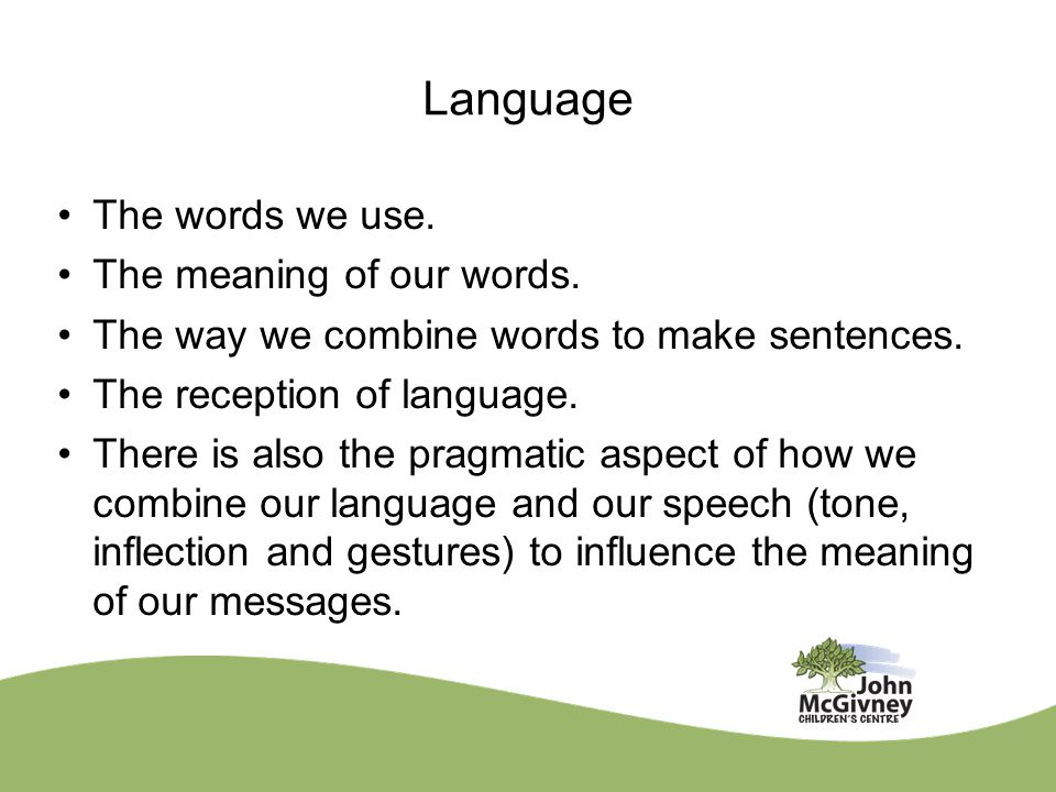 Language The words we use. The meaning of our words. The way we combine words to make sentences. The reception of language. There is also the pragmati