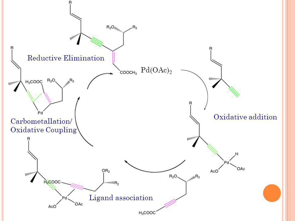 Oxidative addition Ligand association Carbometallation/ Oxidative Coupling Reductive Elimination Pd(OAc) 2