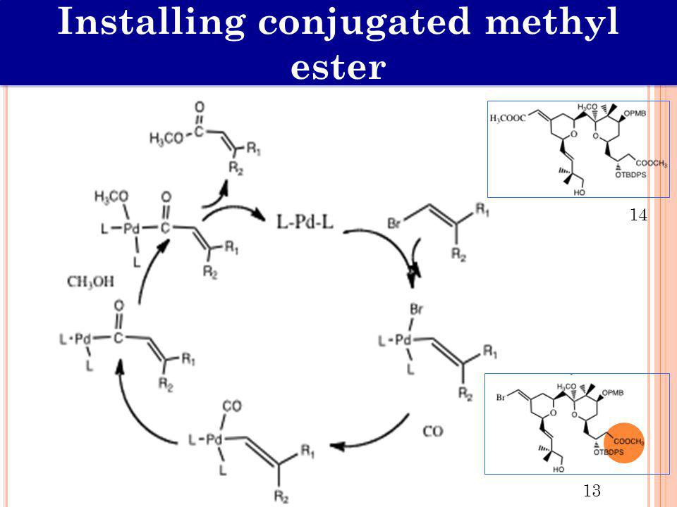 Installing conjugated methyl ester 13 14
