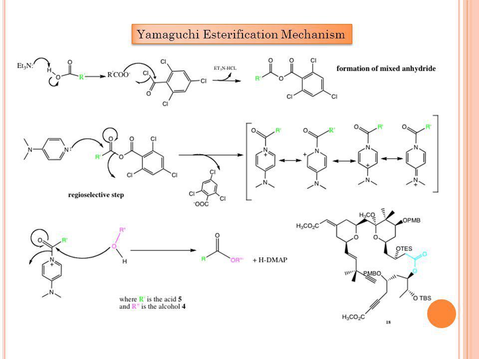 Yamaguchi Esterification Mechanism