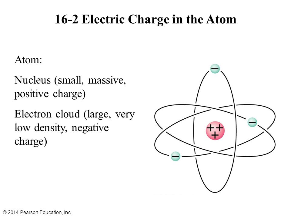 16-2 Electric Charge in the Atom Atom: Nucleus (small, massive, positive charge) Electron cloud (large, very low density, negative charge) © 2014 Pearson Education, Inc.