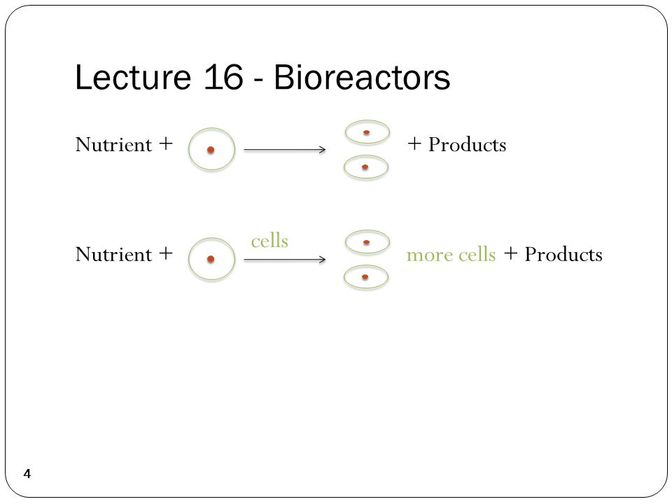 Lecture 16 - Bioreactors Nutrient ++ Products Nutrient ++ Products cells more cells 4