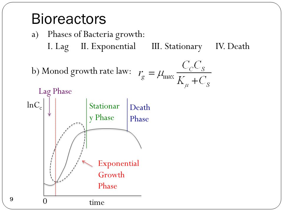 Bioreactors 9 Exponential Growth Phase Death Phase Stationar y Phase Lag Phase 0 time lnC c a)Phases of Bacteria growth: I.