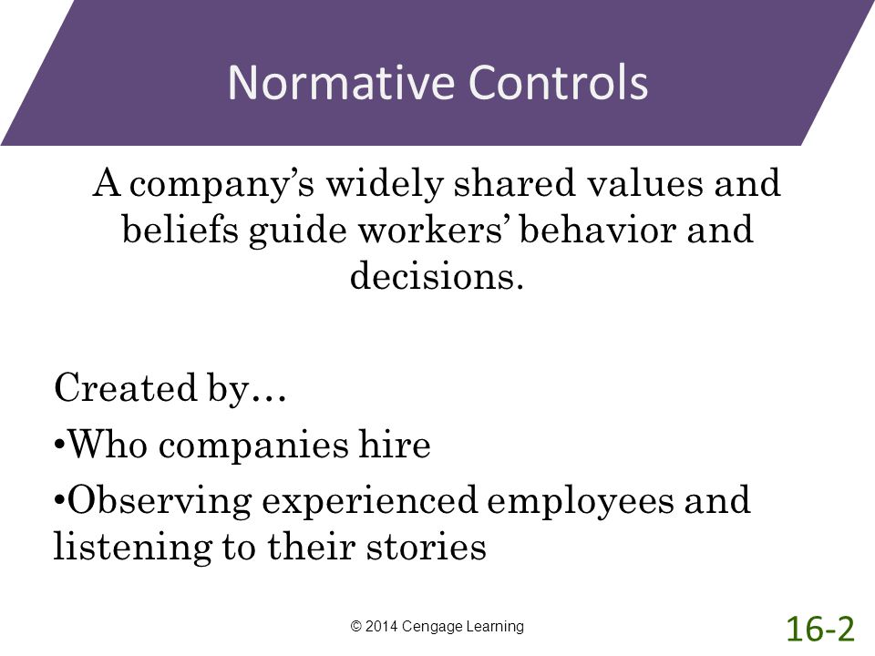 Normative Controls A company's widely shared values and beliefs guide workers' behavior and decisions. Created by… Who companies hire Observing experi