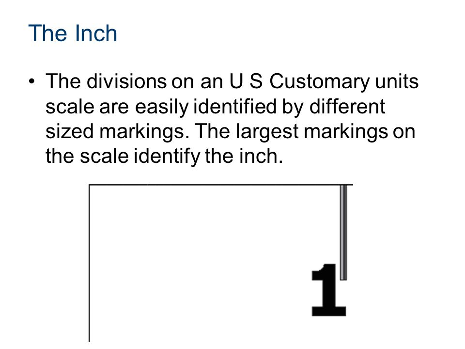 The Inch The divisions on an U S Customary units scale are easily identified by different sized markings.