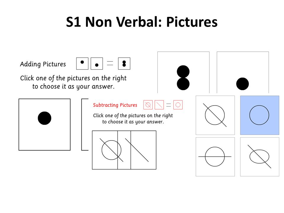 S1 Non Verbal: Pictures