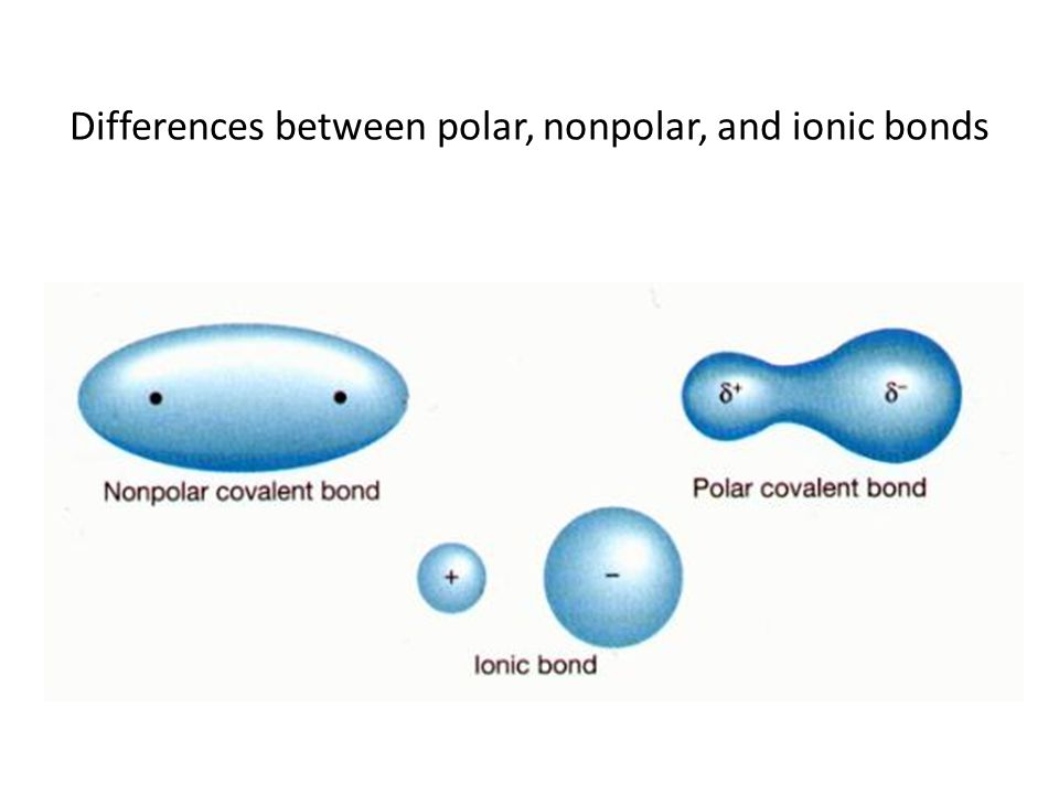 Differences between polar, nonpolar, and ionic bonds