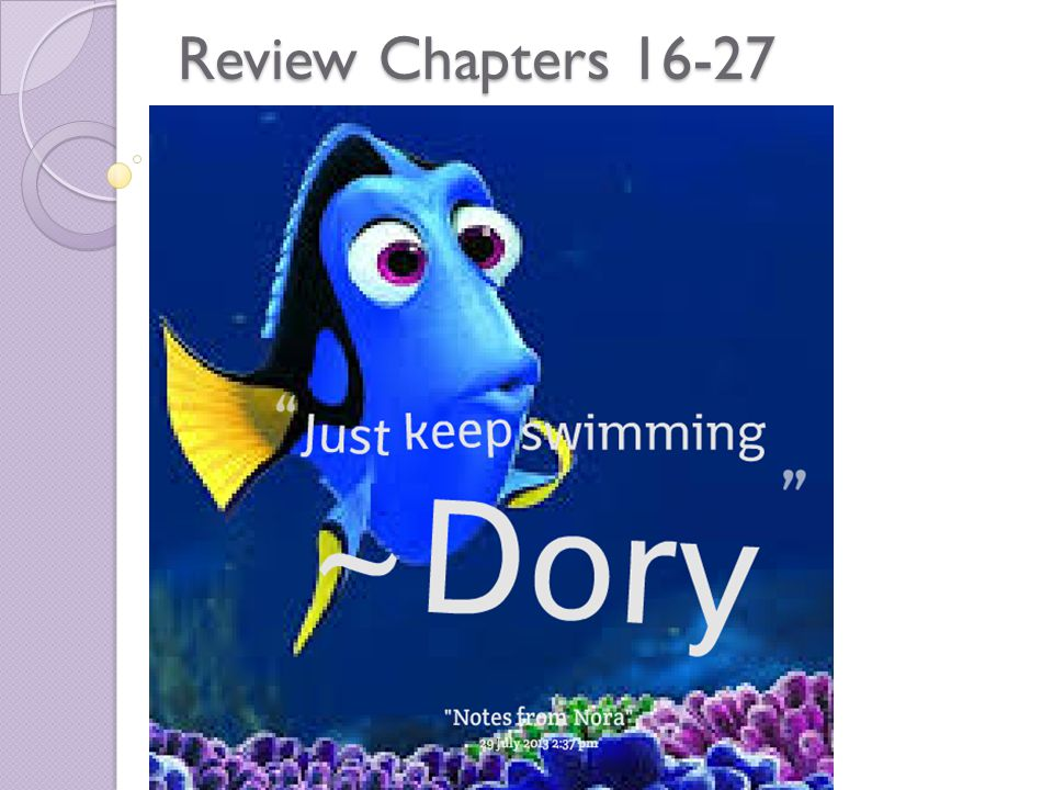 Review Chapters 16-27