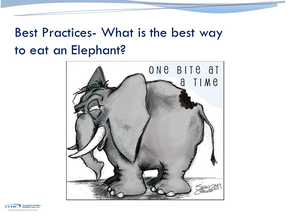Best Practices- What is the best way to eat an Elephant