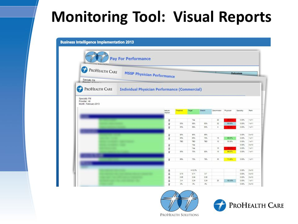 Monitoring Tool: Visual Reports