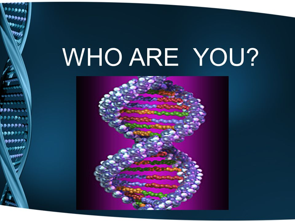 DNA DNA = Deoxyribonucleic Acid Traits which are passed from parents to offspring are carried in DNA.