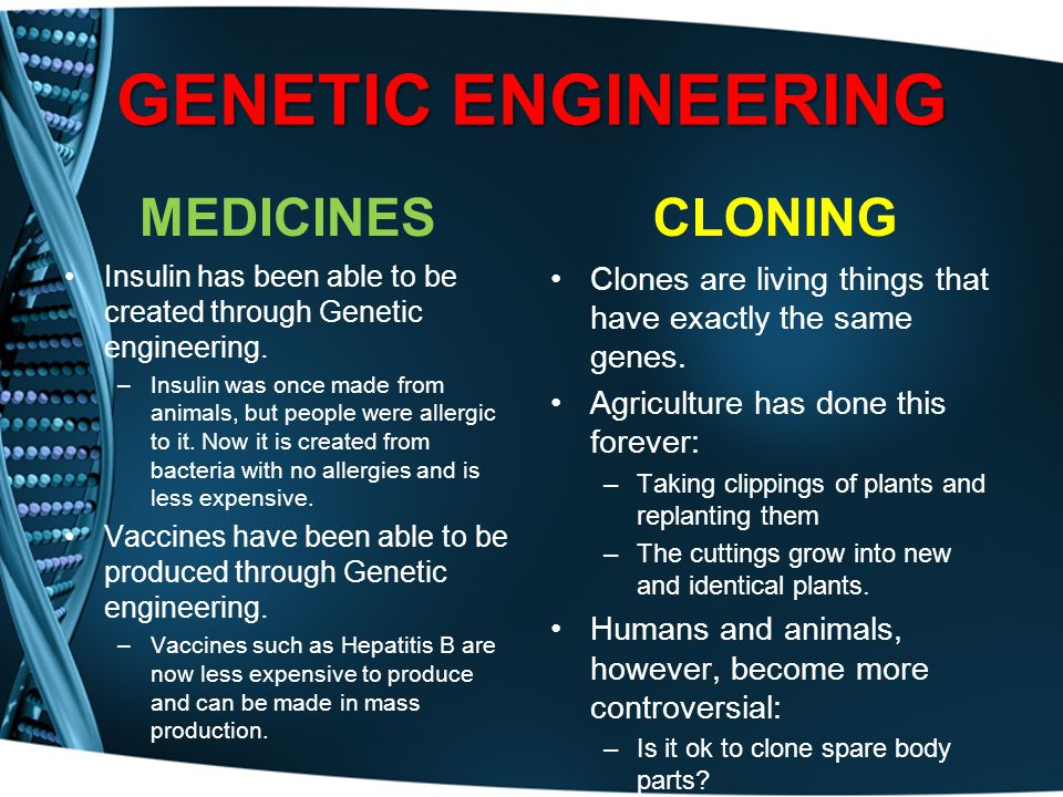 GENETIC ENGINEERING MEDICINES Insulin has been able to be created through Genetic engineering. –Insulin was once made from animals, but people were al