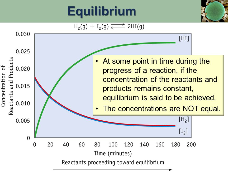 At some point in time during the progress of a reaction, if the concentration of the reactants and products remains constant, equilibrium is said to b