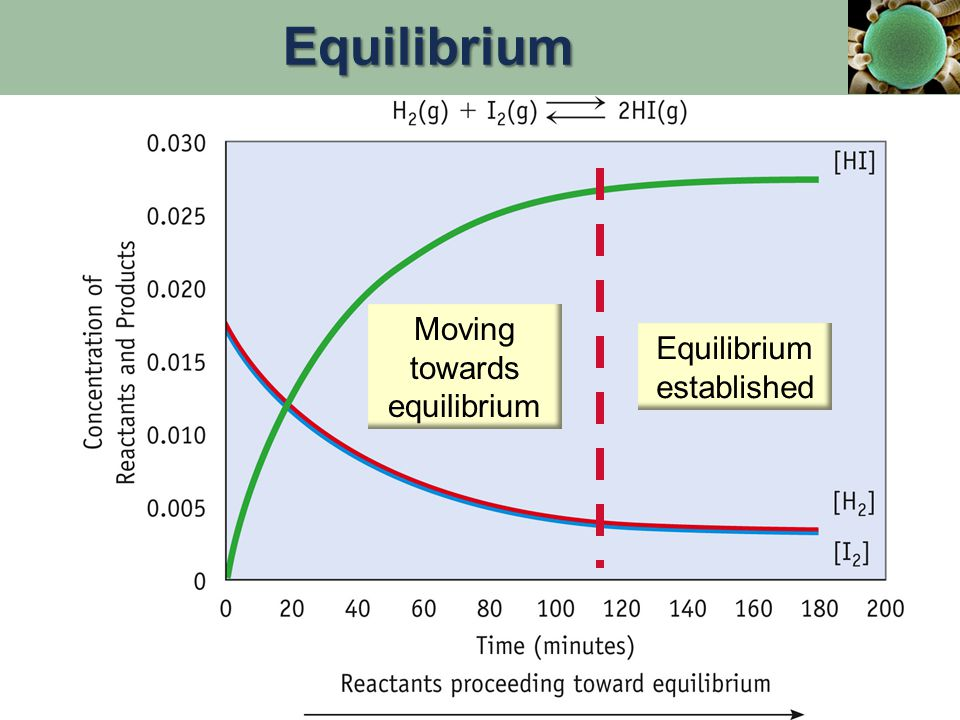 Equilibrium systems are said to be: Dynamic (in constant motion) Reversible Equilibrium can be approached from either direction.