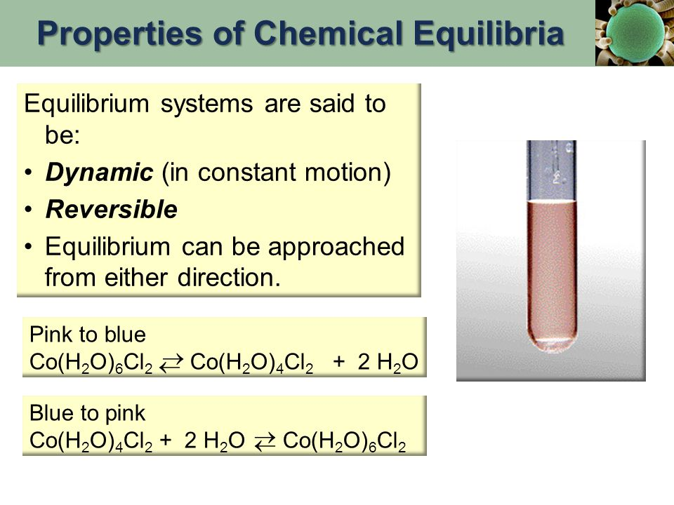 After a period of time, the concentrations of reactants and products are constant.
