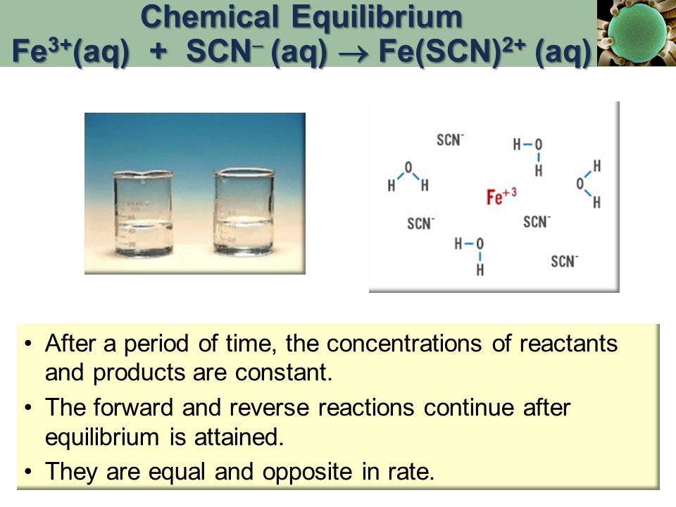 After a period of time, the concentrations of reactants and products are constant. The forward and reverse reactions continue after equilibrium is att